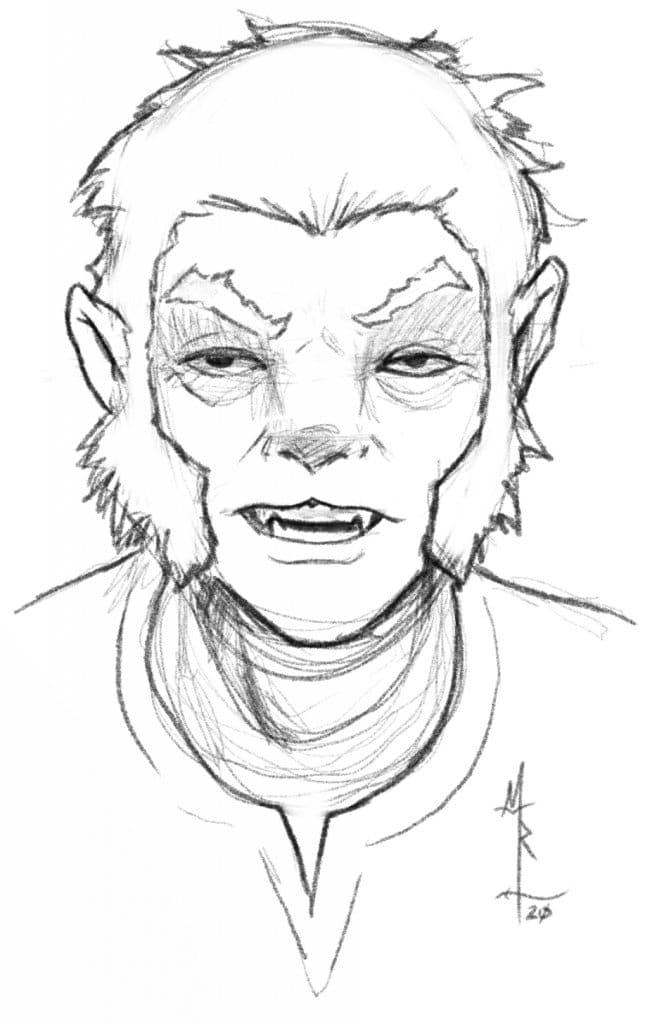 5e shifter character portrait