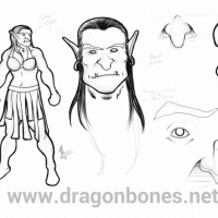 sketches of a female half orc