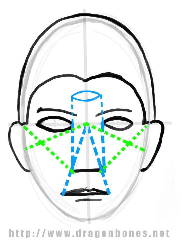 Drawing the Human Face Tutorial 2 - Step 2