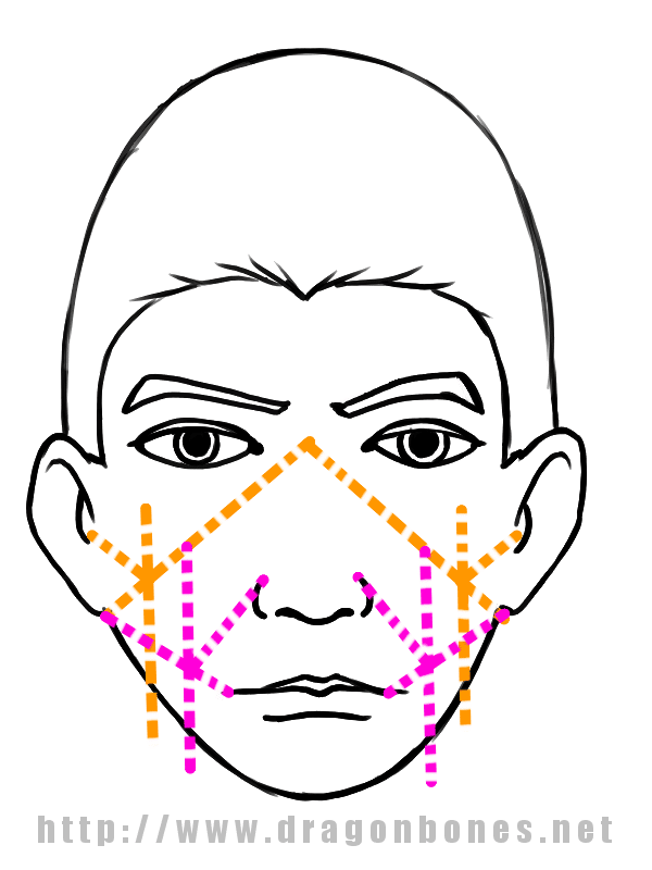 Drawing the Human Face Tutorial 3 - Step 1